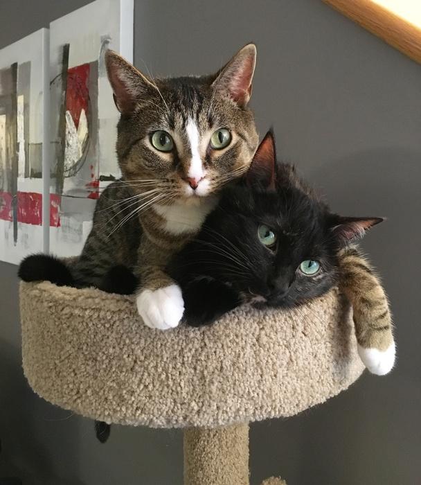 Mimo & Kirry